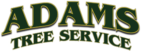 Adams Tree Service Logo