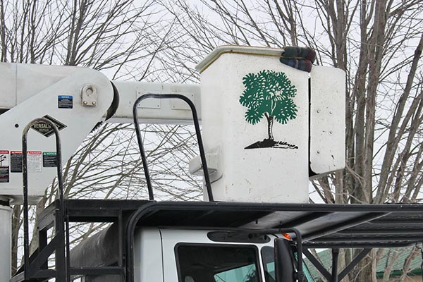 Adams Tree Service line truck bucket
